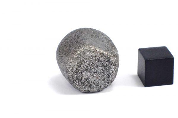 Iron meteorite 31.8 gram wide photography 12
