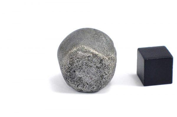 Iron meteorite 31.8 gram wide photography 11