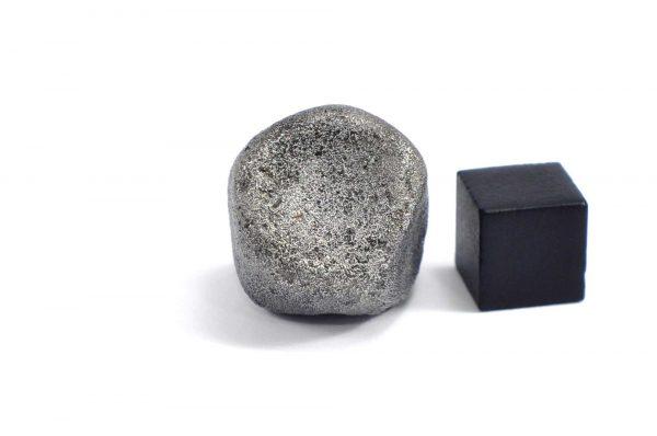 Iron meteorite 31.8 gram wide photography 01