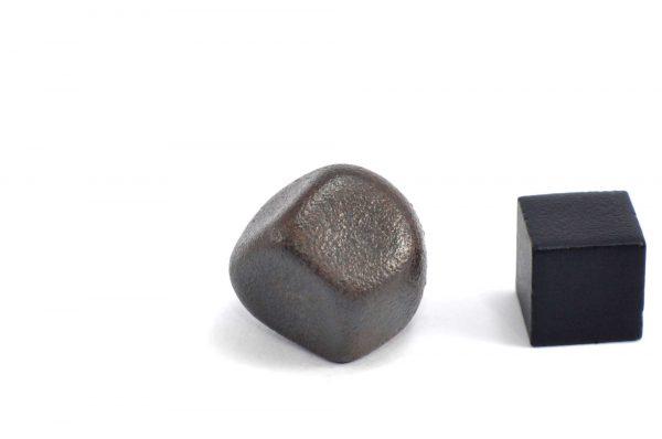 Iron meteorite 18.1 gram wide photography 08