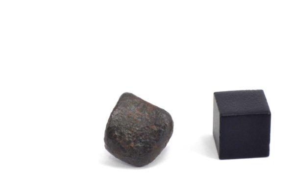 Iron meteorite 6.9 gram wide photography 16
